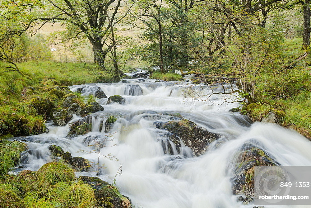 Gairland Burn near to Loch Trool in a part of the Galloway Forest Park, Scotland, United Kingdom, Europe