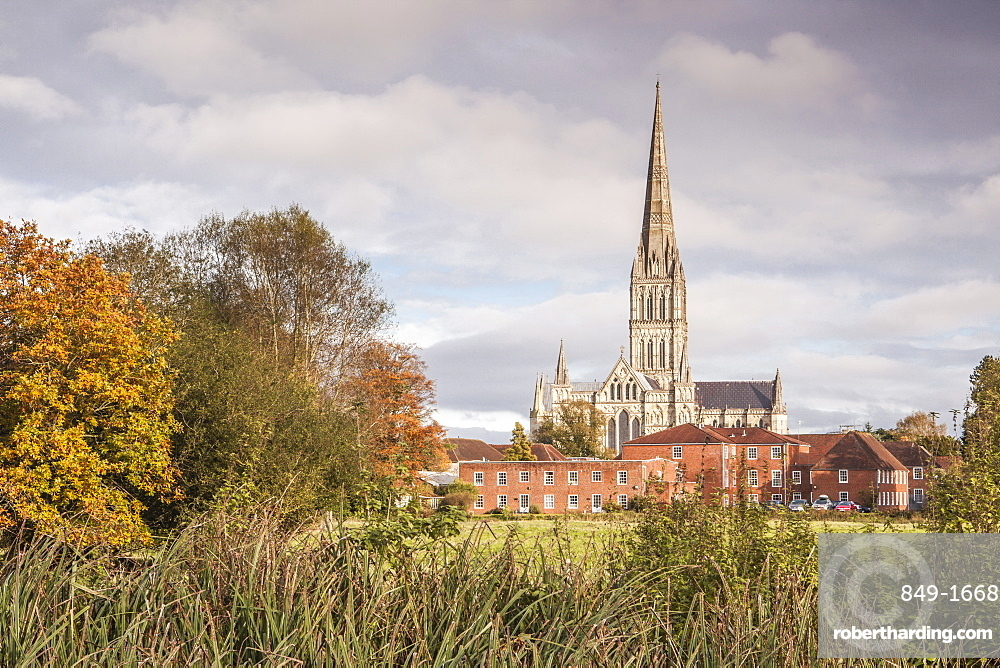 Salisbury Cathedral from the West Harnham Water Meadows, Salisbury, Wiltshire, England, United Kingdom, Europe