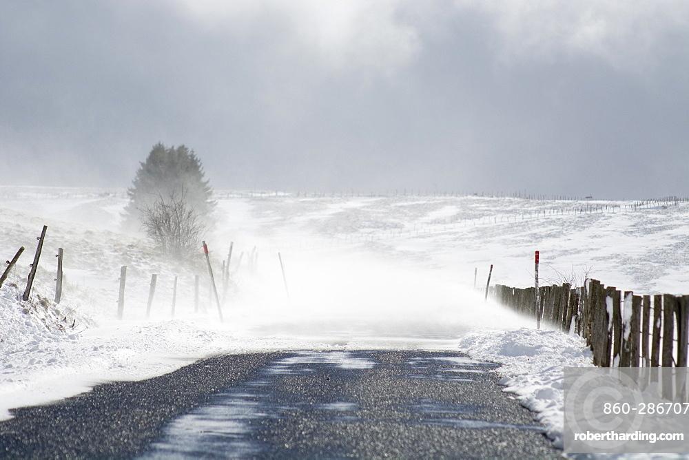 Snow drifts in winter, Massif du Sancy, Parc Naturel Regional des Volcans d'Auvergne , France