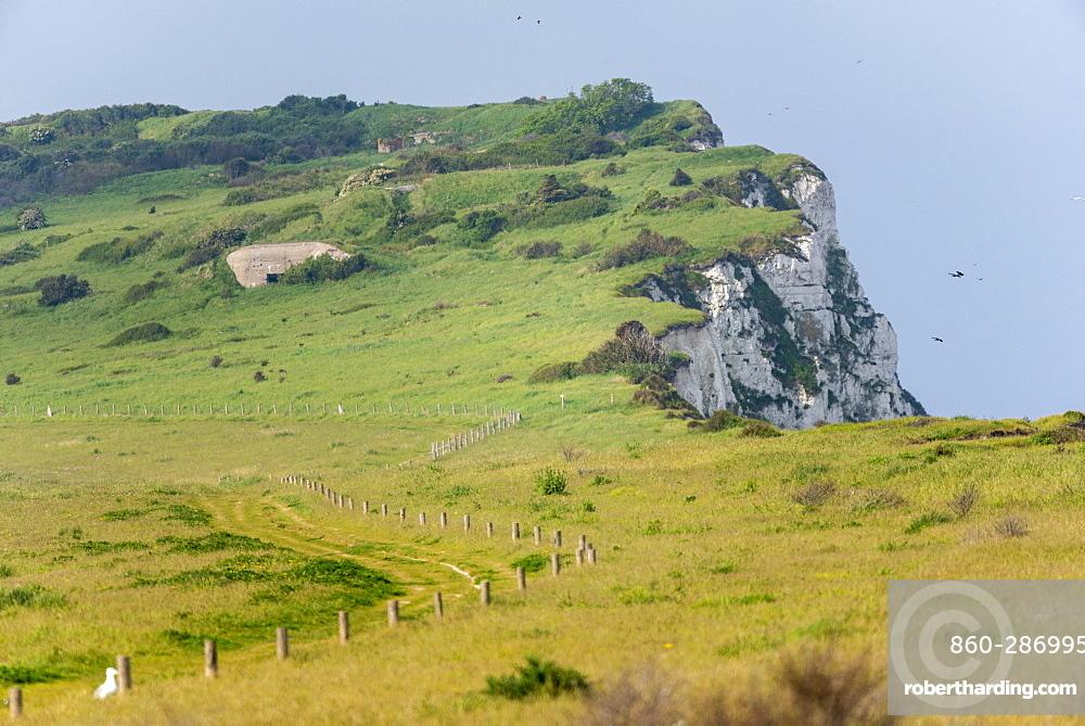 Cape blanc-nez, spring, Pas de Calais, France
