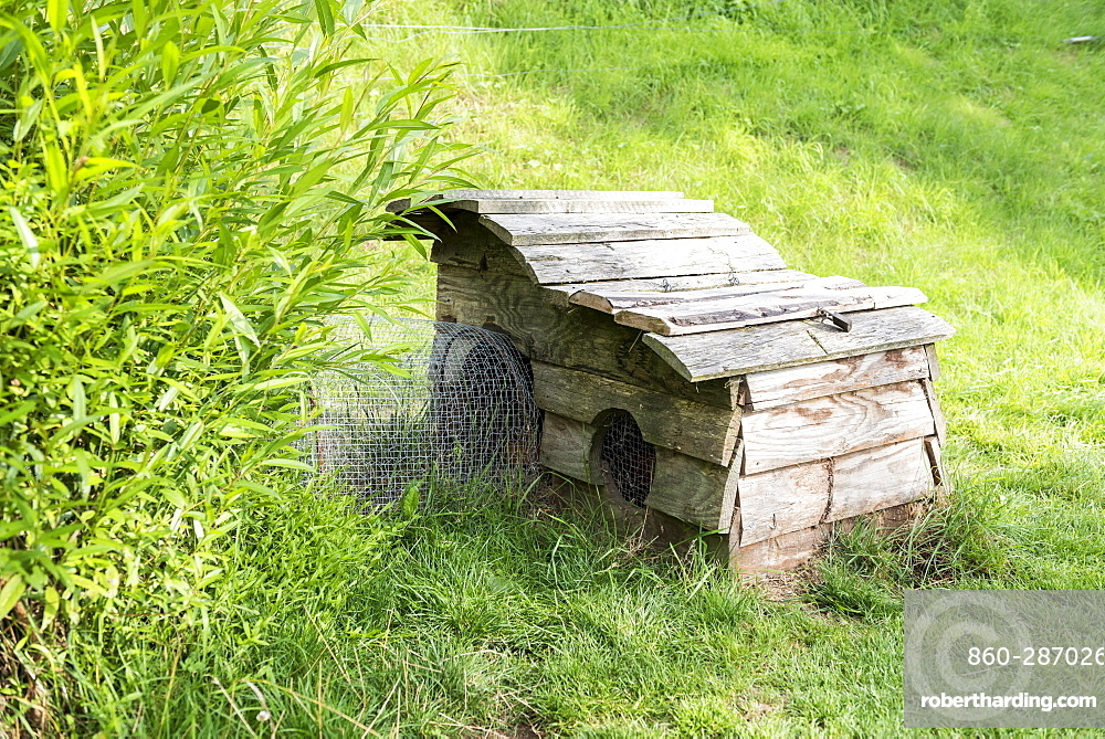 Rabbit hutch in a garden, summer, Moselle, France