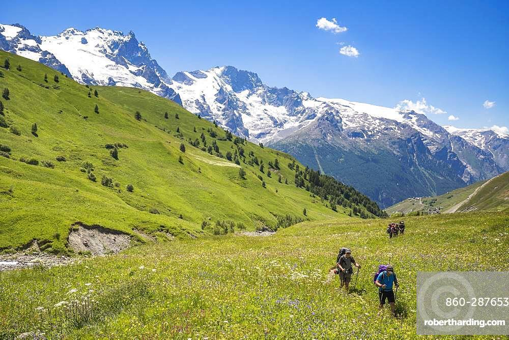 Hikers at the altitude of 1951 m on the path to the neck of Lake Goleon, Valley of the hamlet of Valfroide in the massif of Oisans with La Meije (3983m) in the background, Ecrins National Park, Hautes-Alpes, La France