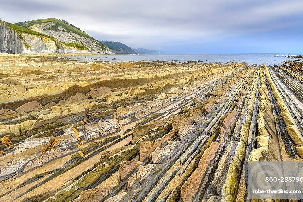 Remarkable flysch formations of Deba, Basque Coast Geopark, Basque Country, Spain. Flysch formed at the end of the Mesozoic era in the Cretaceous - flyschs are formed by sediment accumulation following repeated submarine avalanches, due to earthquakes, and producing after compaction and crystallization very regular layers of sandstone and limestone here recovered by Pyrenean orogeny and released by erosion.