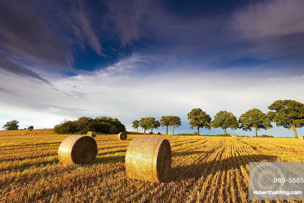 harvested grain field stubble field with straw bales Saxony Germany Europe
