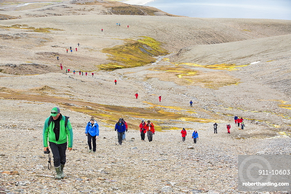 Passengers on an expedition cruise to Anarctica recreat part of Shakleton's famous walk across South Georgia. The group are walking from Fortuna Bay to Stromness.