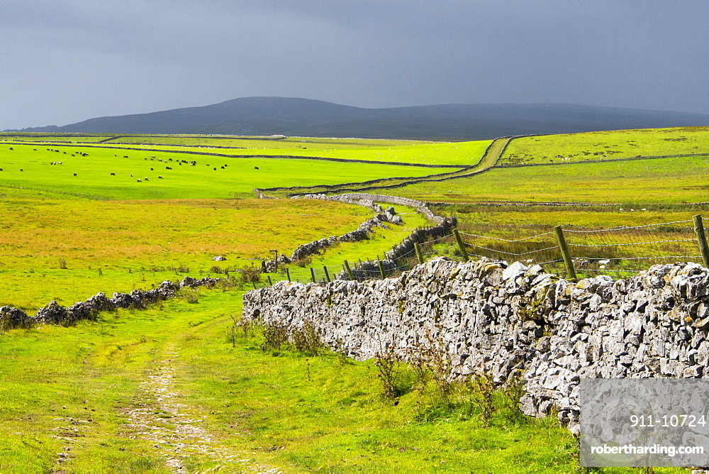 Mastiles Lane, an ancient green lane in the Yorkshire Dales, UK.