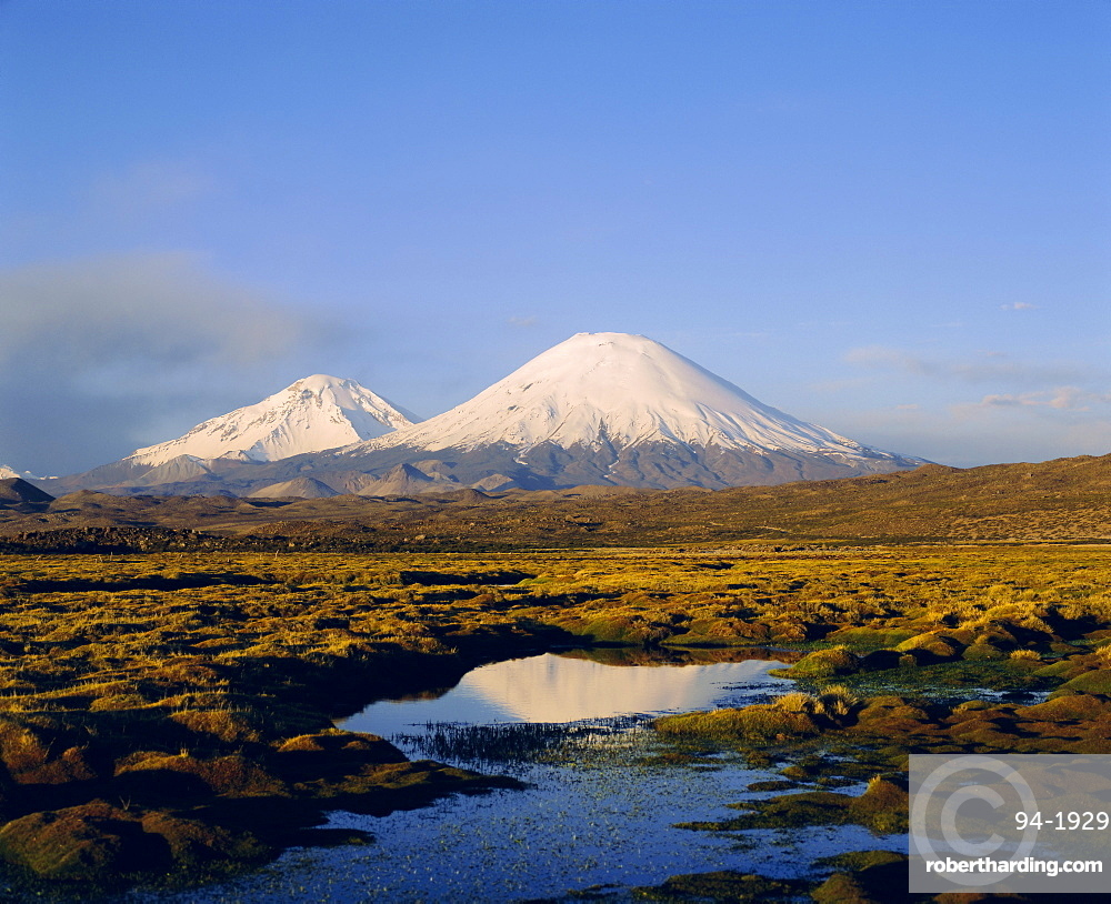 Volcan Parinacota and Volcan Pomerape, Lauca National Park, Chile, South America