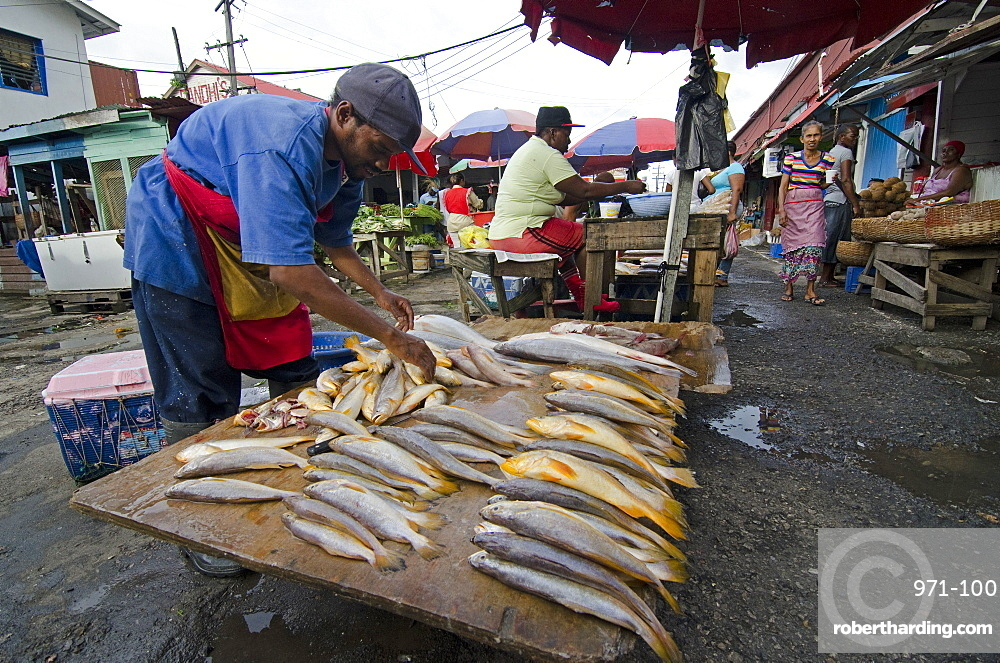 Fish stall in Stabroek Market, Georgetown, Guyana, South America