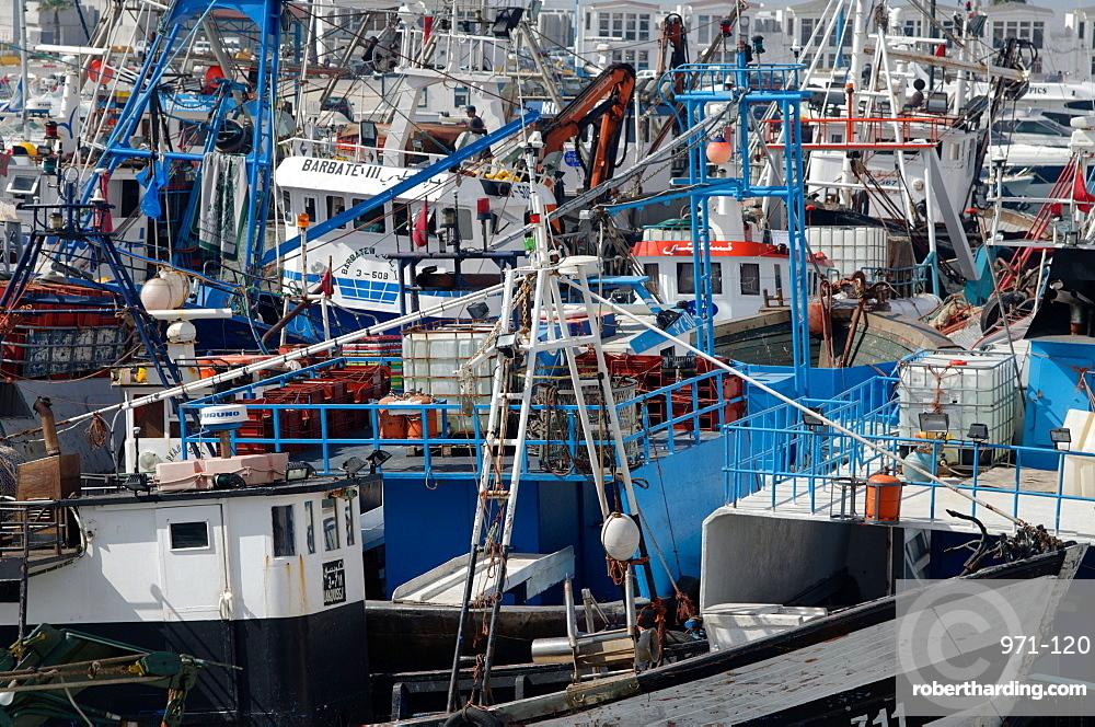 Densely crowded fishing boats moored in Tangier fishing harbour, Tangier, Morocco, North Africa, Africa
