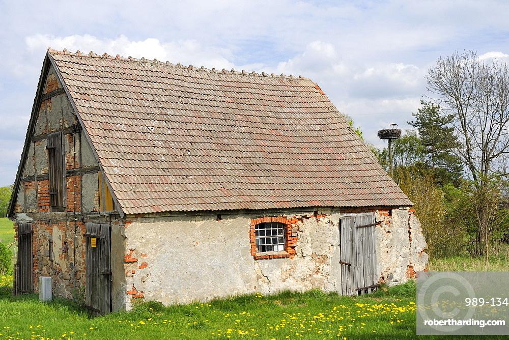 Small traditional barn, with nesting white stork (Ciconia ciconia) nearby, Schorfheide-Chorin Biosphere reserve, Brandenburg, Germany, Europe