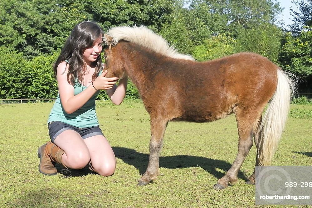 Girl stroking American miniature horse (Equus caballus) foal, Wiltshire, England, United Kingdom, Europe