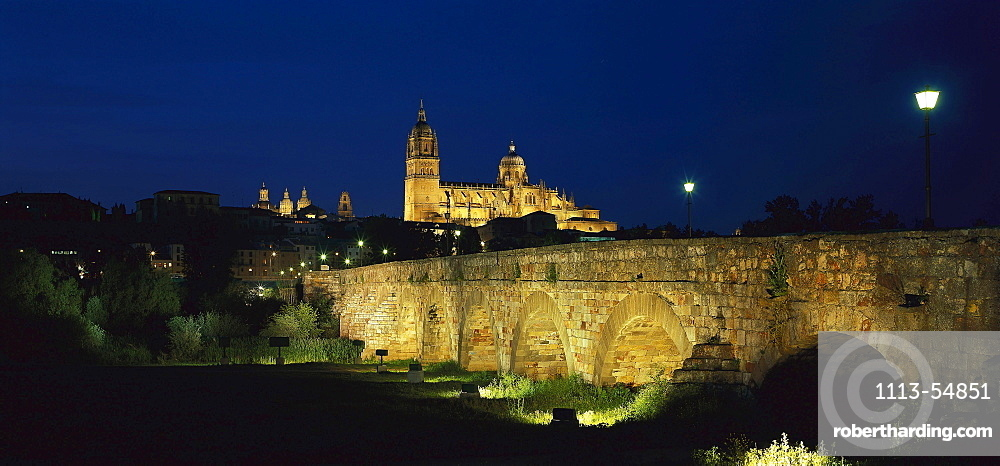 Puente Romano Roman bridge and cathedral at night, Salamanca, Castilla Leon, Spain