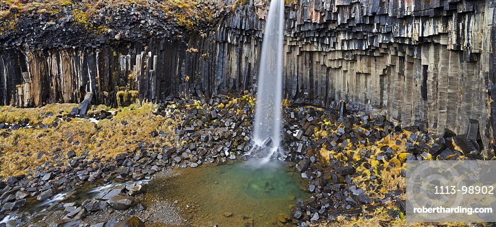 Svartifoss waterfall with basalt columns, Skaftafell, Oraefajokull, East Iceland, Iceland