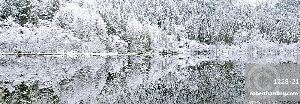 Reflections on Loch Chon in winter, Aberfoyle, Stirling, The Trossachs, Scotland, United Kingdom, Europe