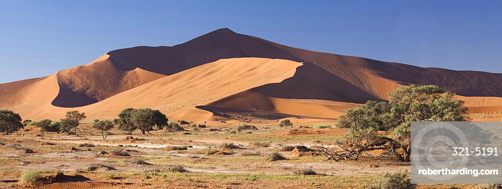 Panoramic view of the Ancient orange sand dunes of the Namib Desert at Sossusvlei, near Sesriem, Namib Naukluft Park, Namibia, Africa