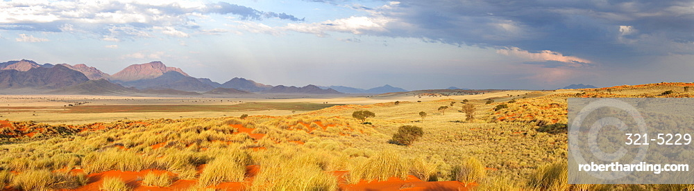 Panoramic view over the magnificent desert landscape of the Namib Rand game reserve bathed in evening light, Namib Naukluft Park, Namibia, Africa