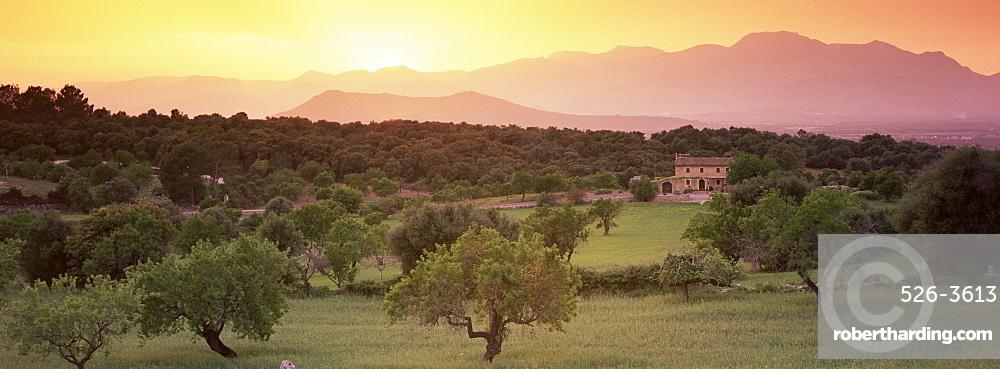 View towards Sierra de Tramuntana (Serra de Tramuntana) mountains, near Muro, Majorca, Balearic Islands, Spain, Europe