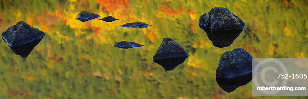 Close-up of granite rocks in a pond, Bubble Pond, Acadia National Park, Maine, USA