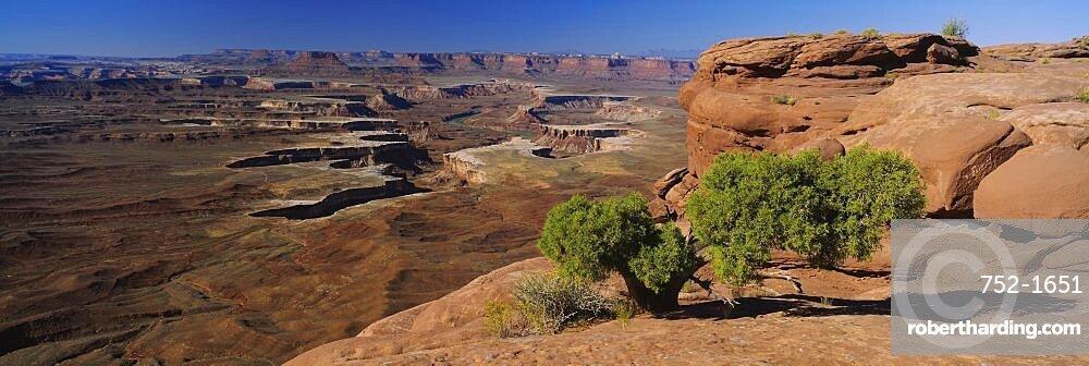 High angle view of a canyon, Canyonlands National Park, Utah, USA
