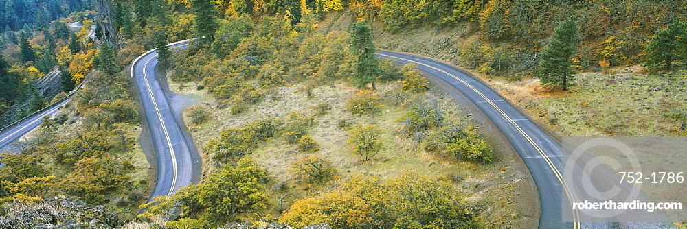 High angle view of a road passing through a forest, Columbia River Highway, Rowena, Oregon, USA