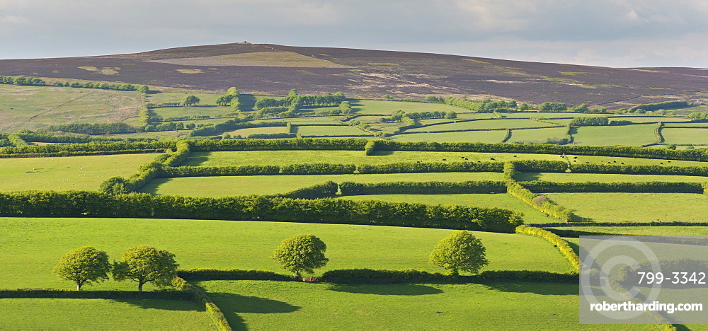 Patchwork rolling countryside below Dunkery Beacon, Exmoor, Somerset, England, United Kingdom, Europe