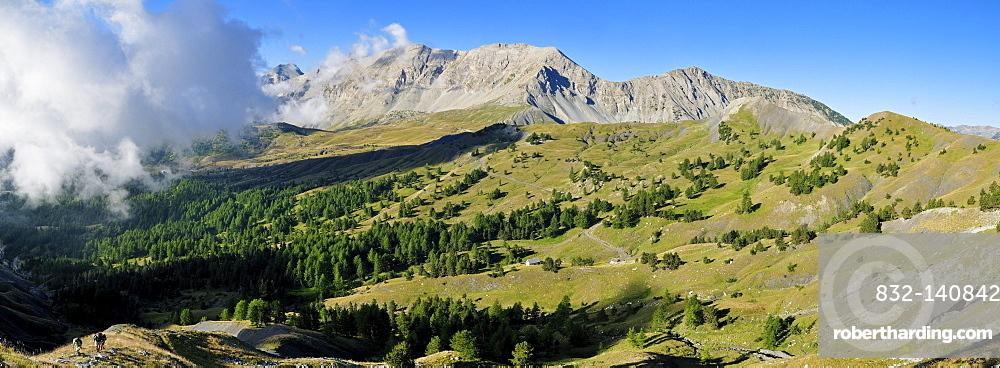 Panorama, Col des Champs mountain pass, Mercantour National Park, Haute Verdon mountains, Alpes-de-Haute-Provence, Region Provence-Alpes-Cote d'Azur, France, Europe