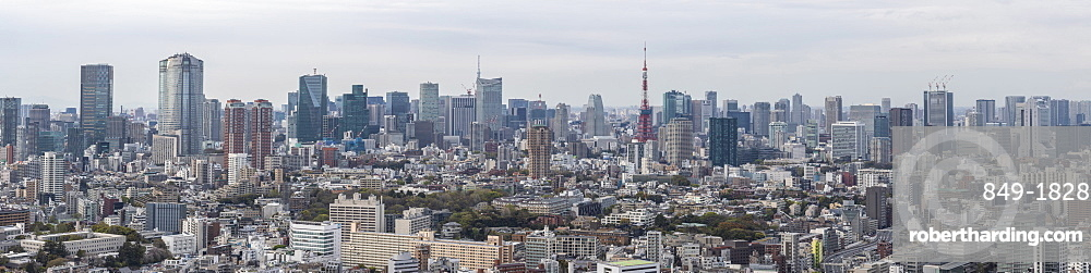 Panorama of the skyscrapers of central Tokyo and the iconic Tokyo tower, Tokyo, Japan, Asia