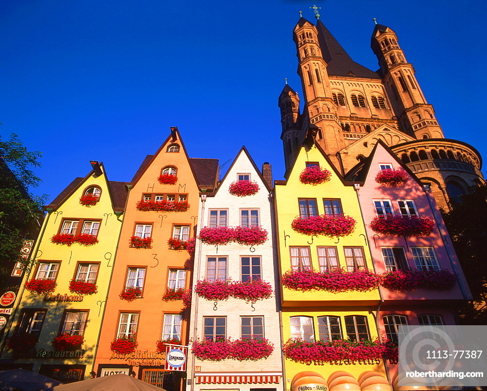 Cologne, Gross St, Martin, fishing market, colorful facas