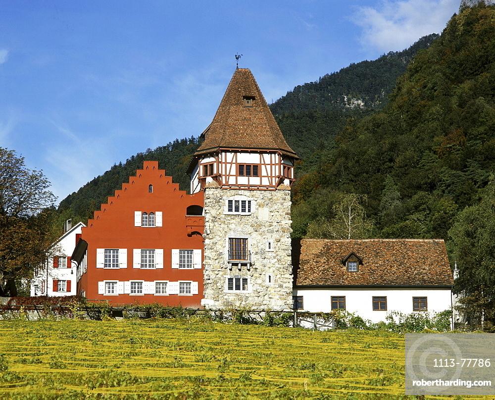Europe, Liechtenstein, Vaduz, Red house, vineyards