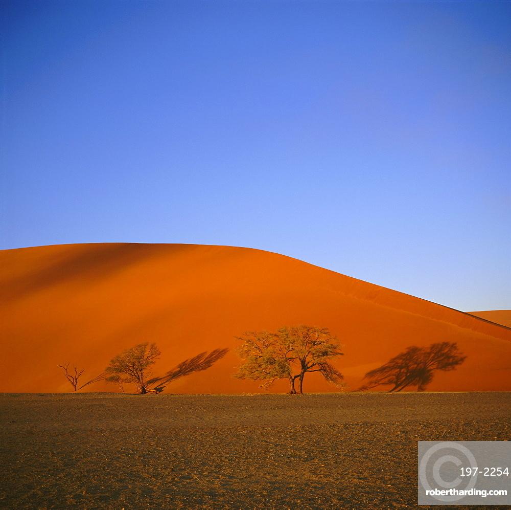 Sand dunes near Sossusvlei, Namib-Naukluft Park, Namibia