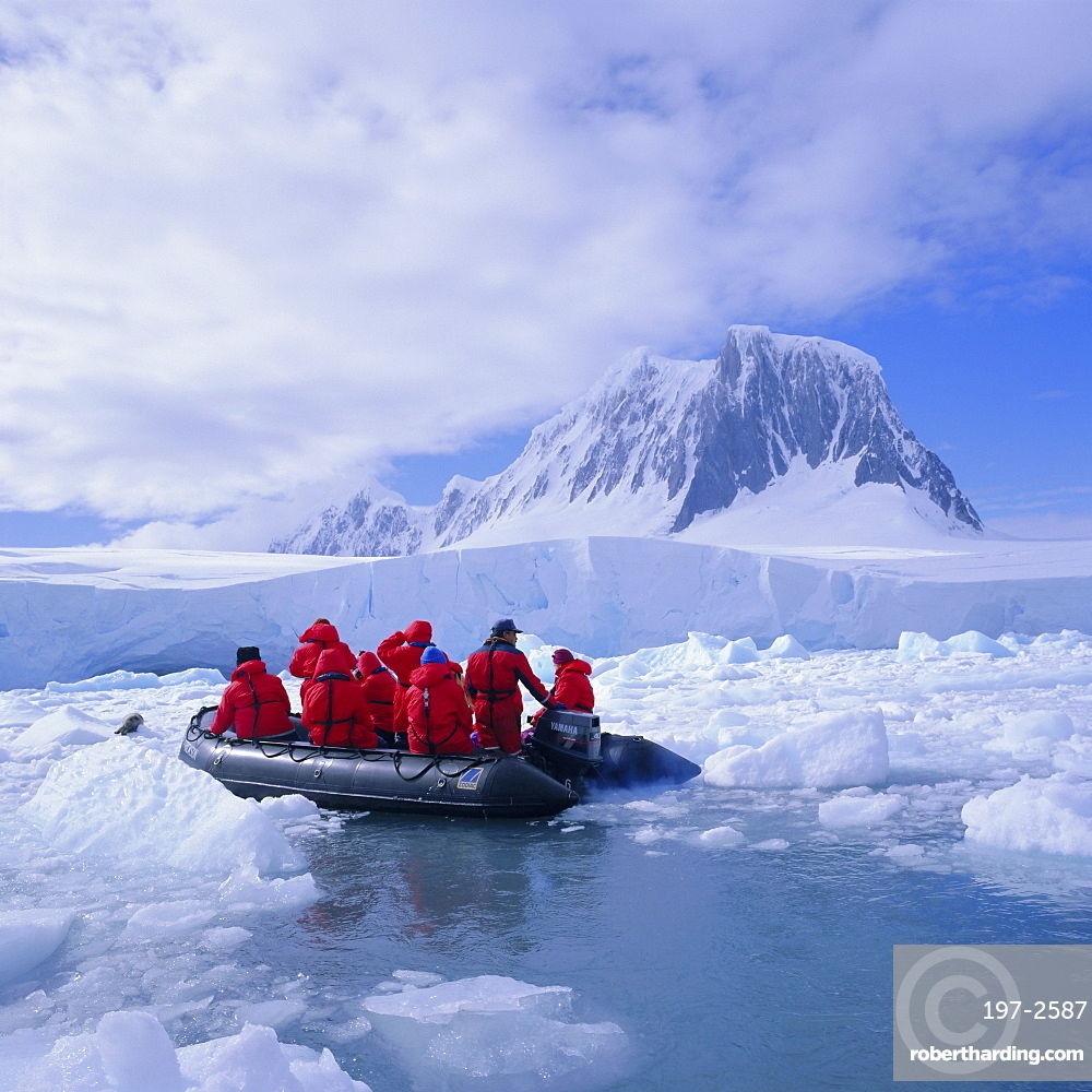 Tourists ice cruising in rigid inflatable boat approaching crabeater seal, Antarctica