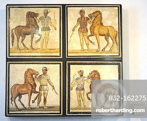 Mosaic with charioteers in the Palazzo Massimo, National Museum of Rome, Lazio, Italy, Europe