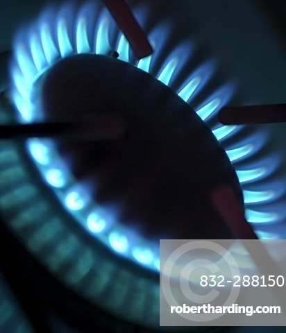 Gas flame on a cooker