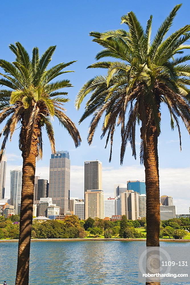 Sydney CBD and city centre from Sydney Botanic Gardens, Sydney, New South Wales, Australia, Pacific