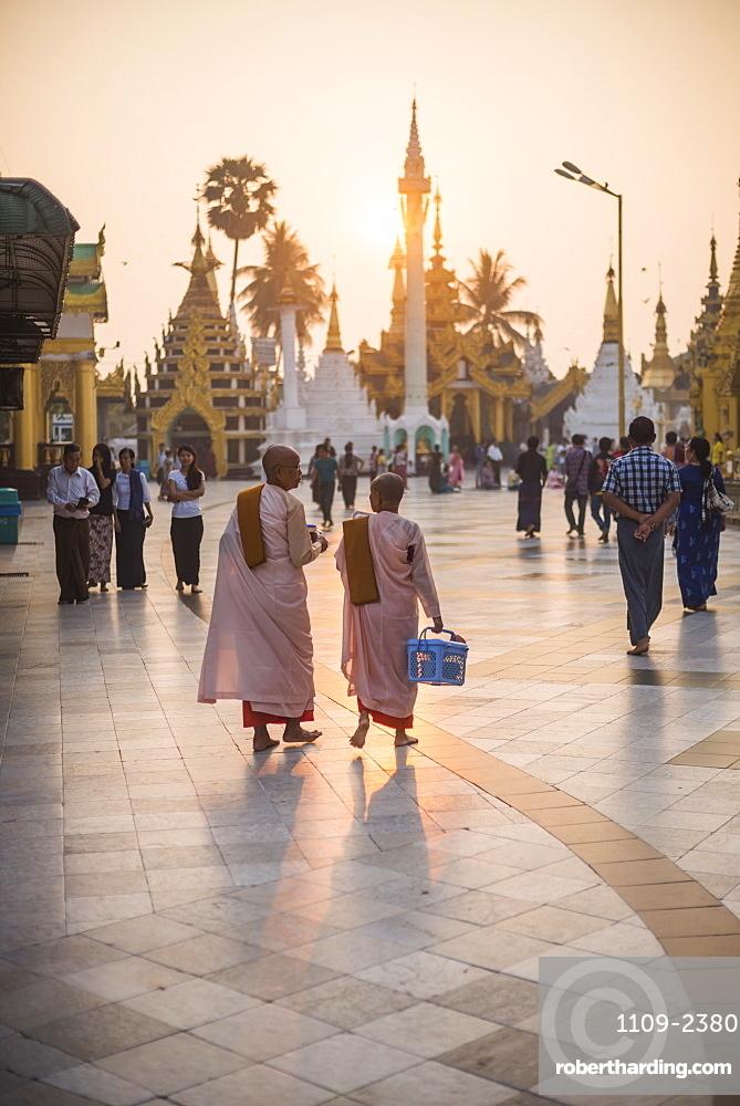 Buddhist nuns in pink robes at sunrise at Shwedagon Pagoda (Golden Pagoda), Yangon (Rangoon), Myanmar (Burma), Asia