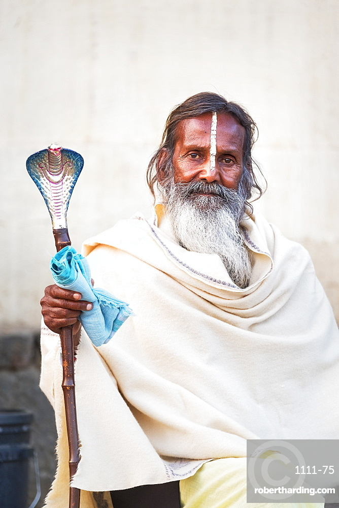 Portrait of Sadhu with cobra cane in Varanasi, India