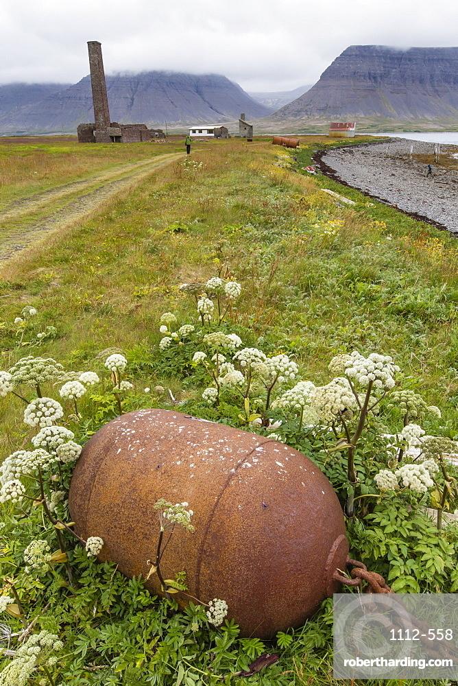 Abandoned whale shore processing station, Talknafjorour, Iceland, Polar Regions