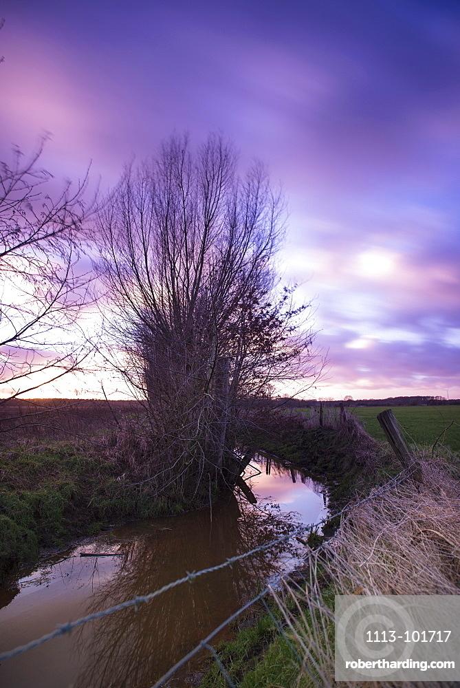 Willow trees along a creek in the evening sun, Long Exposure, Rhade, Dorsten, North Rhine Westphalia, Germany