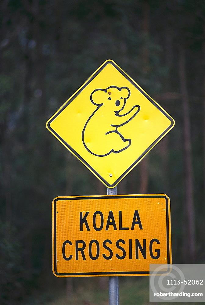Koala Warning Sign, Near Woombah, NSW, Australia