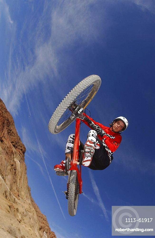 Man on a mountain bike doing a jump, Gooseberry Trail, Zion National Park, Springdale, Utah, USA