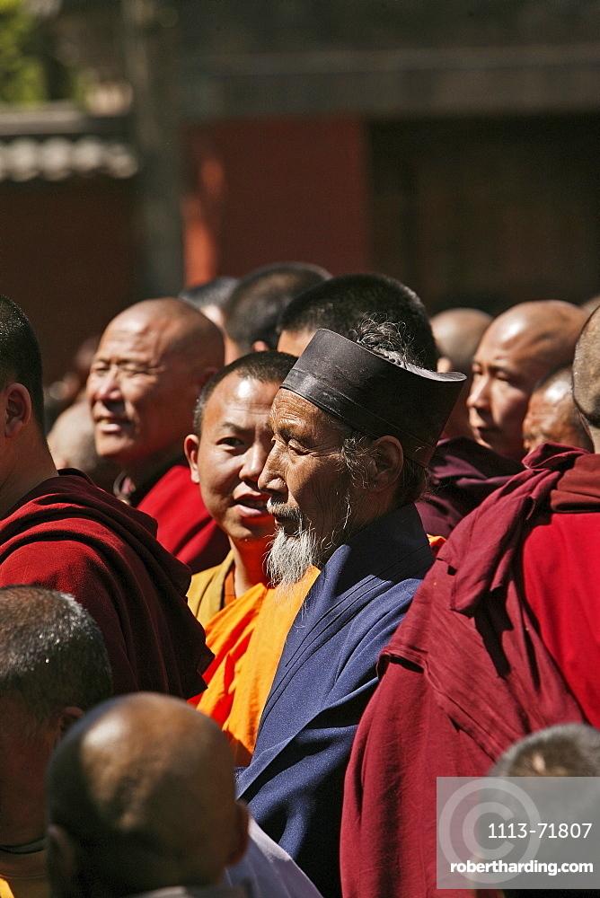 Daoist monk celebrating with buddhists, Taihuai, Wutai Shan, Five Terrace Mountain, Buddhist Centre, town of Taihuai, Shanxi province, China, Asia
