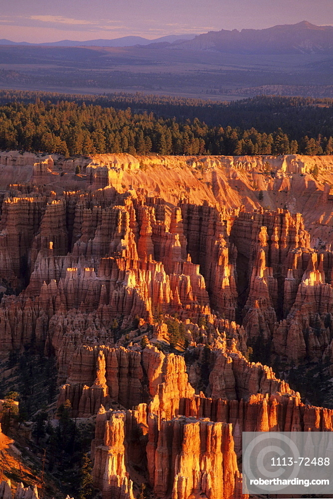 Bryce Canyon in Morning Light, View from Bryce Point, Bryce Canyon National Park, Utah, USA
