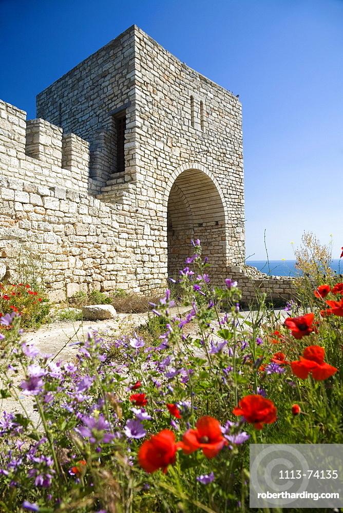 Flowers and castle in the sunlight, Cape Kaliakra, Black Sea, Bulgaria, Europe