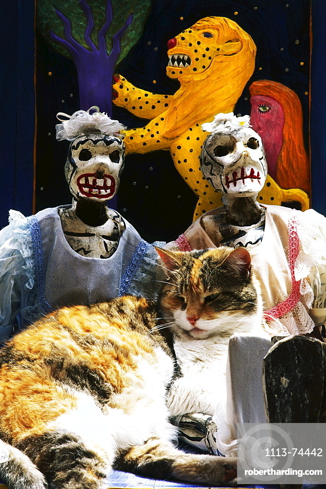 Cat with two typical mexican masks in the background, Guanajuato, Mexico