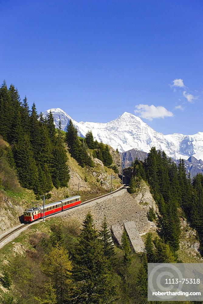 Schynige Platte Railway, Eiger (3970 m), Moench (4107 m) and Jungfrau (4158 m) in background, Schynige Platte (1967 m), Interlaken, Bernese Oberland (highlands), Canton of Bern, Switzerland