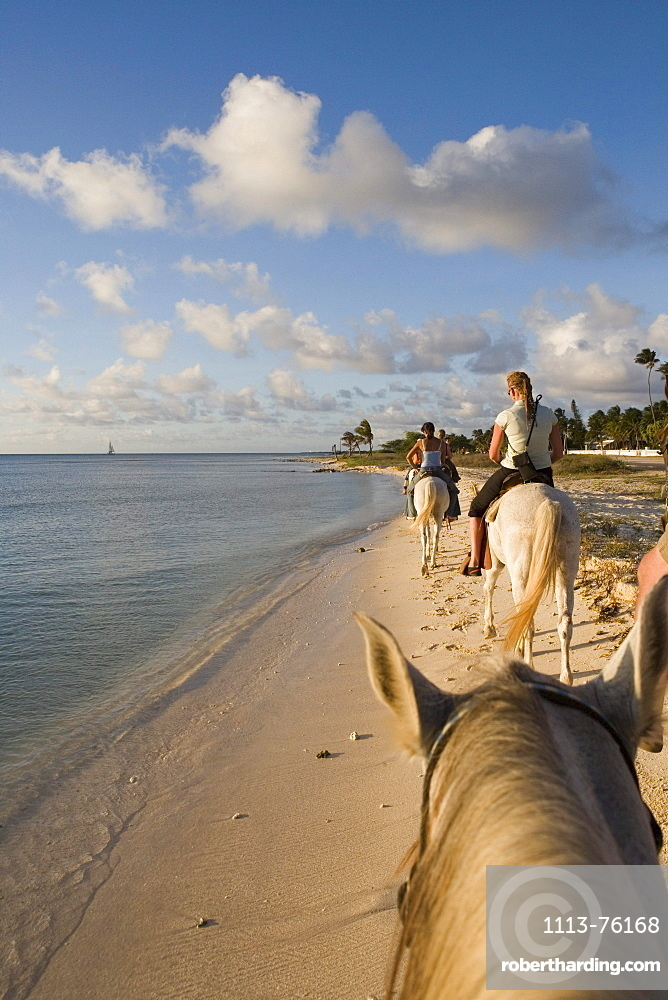 Horseback Riding on Beach, Rancho Notorious, Aruba, Dutch Caribbean