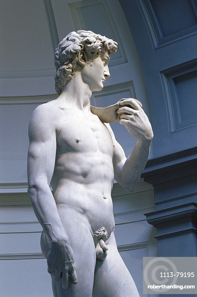 David, original marble sculpture by Michelangelo, Galleria dell'Academia, Florence, Tuscany, Italy