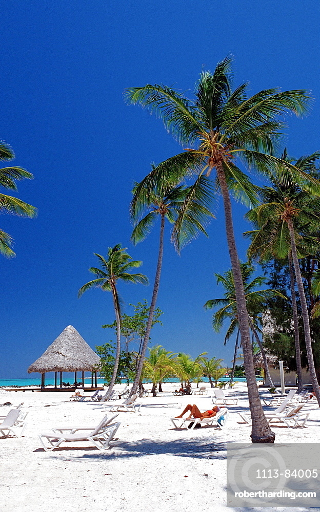 Sandy beach, Punta Cana, Caribbean, Dominican Republic