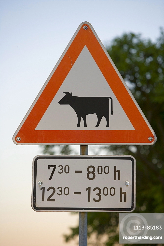 Cow Crossing Warning Sign, Bettenhausen, Rhoen, Thuringia, Germany