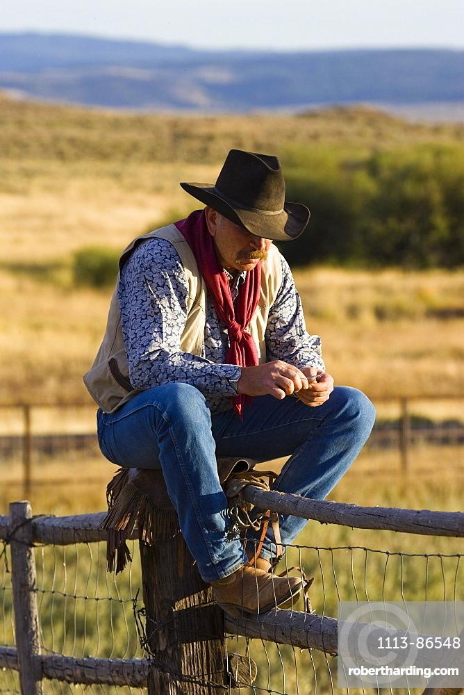 cowboy on fence, wildwest, Oregon, USA